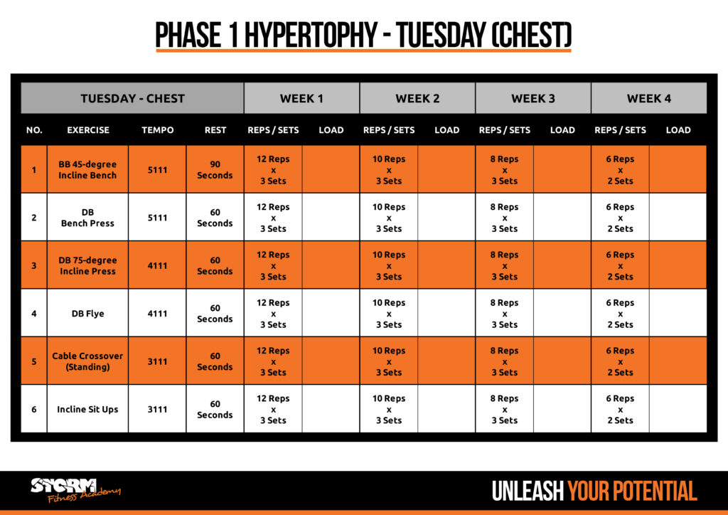Phase 1 - chest day
